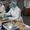 Упаковщик  Бортового питания #1629136