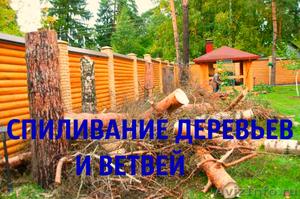 Спиливание деревьев и корчевание пней.  - Изображение #1, Объявление #1627238