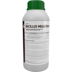 Биомасса Bacillus megaterium - Изображение #2, Объявление #1698074