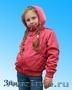 Верхняя детская одежда для Вашего ребенка. - Изображение #6, Объявление #411042