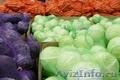 продам упаковку для овощей. сетка овощная, сетка рукав, Объявление #250437