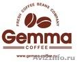 кофе в зернах ТМ Gemma-Coffee