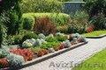 Создадим восхитительный сад - Изображение #2, Объявление #1543661