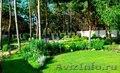 Создадим восхитительный сад