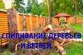 Спиливание деревьев и корчевание пней. , Объявление #1627238